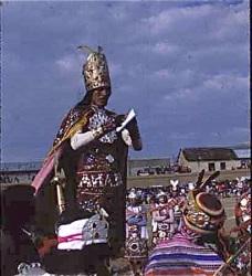 L'Inka regarde le livre